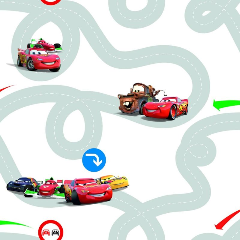 CARS RACETRACK
