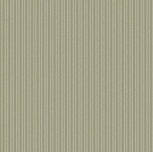 COTTON STRIPE OLIVE